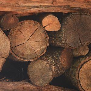kominkowe drewno
