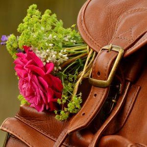 modny skórzany plecak