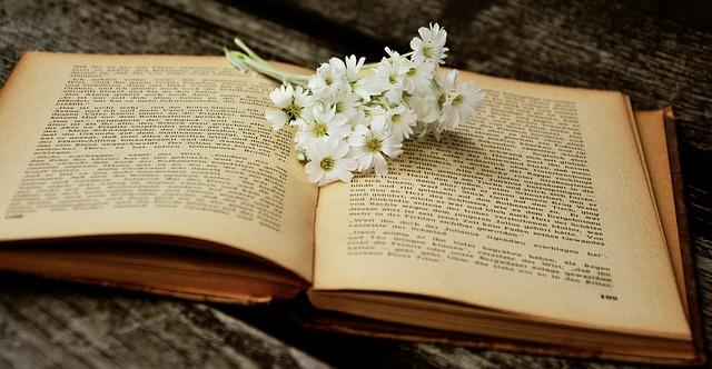book-2363734_640